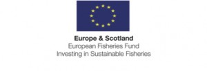 European Fisheries copy 2