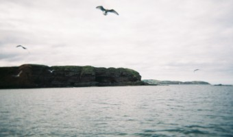 Postcards From Eyemouth Workshop