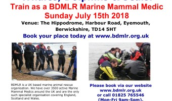 MMM Course Poster Eyemouth 2018